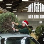 Forestry Club Christmas Tree Sale